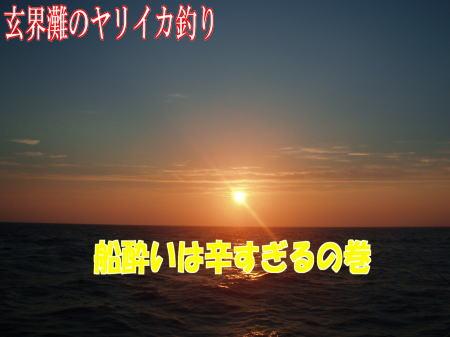 玄海イカ1