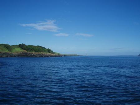 波戸岬を望む