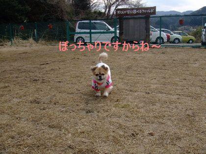 2008_03060068.jpg