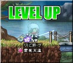 level up 49