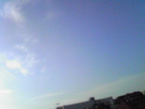 綺麗な青空♪