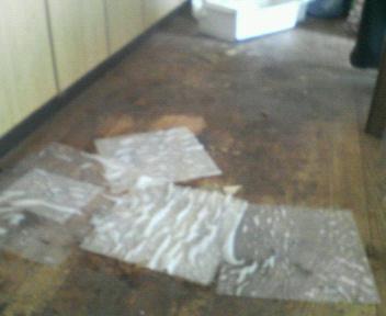 台所床(掃除前)