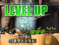 Maple091004_154733.jpg