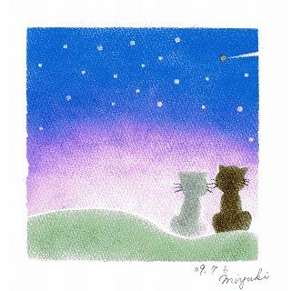 60.星空とネコ