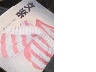 20071019010744.jpg