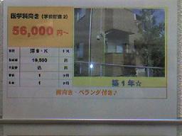 20071127133100.jpg