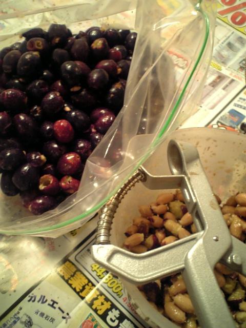 オリーブオイル作り