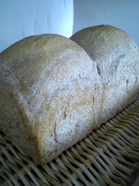 山食パン~花梨酵母