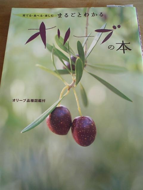 オリーブの本
