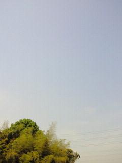 image_20110520092024.jpg