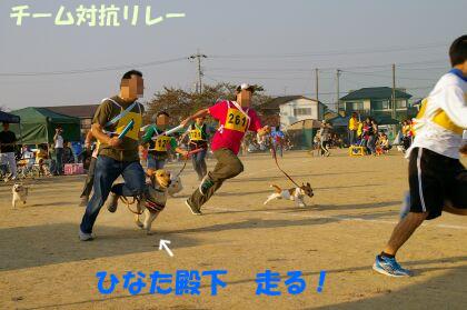 IMGP6122-un.jpg