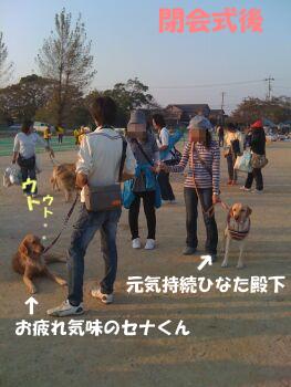 IMG_0097-un.jpg