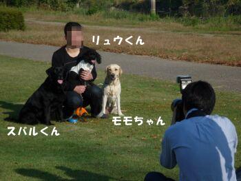 P1020165-ki.jpg