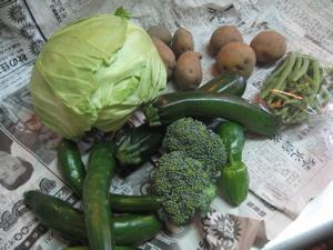 10:2野菜