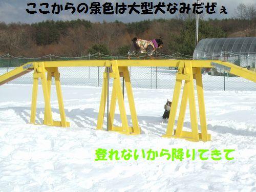 03_20120220220248.jpg