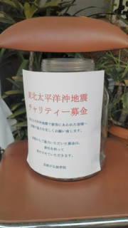 20110312165205.jpg