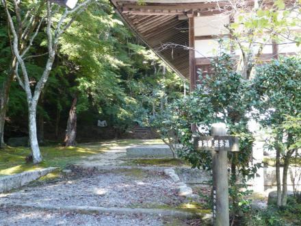 091010sanageyama10.jpg