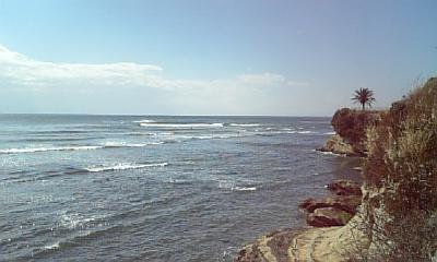 11-4 今年一番の波は