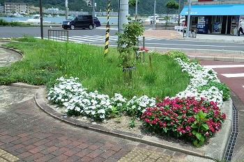 夏の和田駅の風景CIMG1599