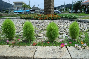 夏の和田駅の風景CIMG1604