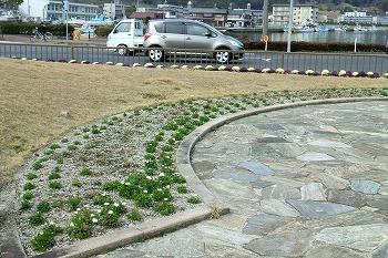 春の和田駅の風景2010-2011 4月16日まで 222