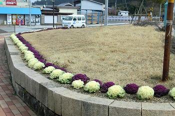 春の和田駅の風景2010-2011 4月16日まで 226