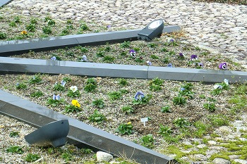 春の和田駅の風景2010-2011 4月16日まで 228