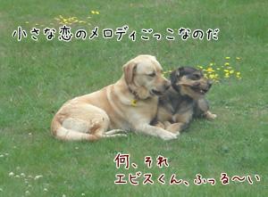 Yebisu&Sandy7