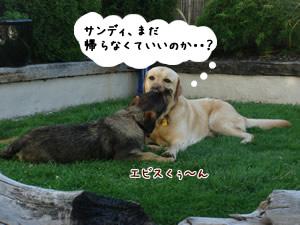 Yebisu&Sandy