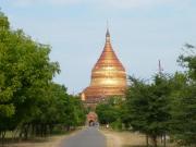 ミャンマー119