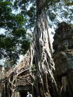 カンボジア86