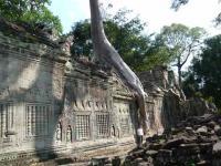 カンボジア125