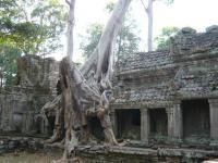 カンボジア126