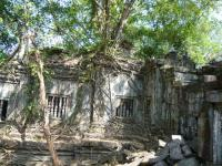 カンボジア145