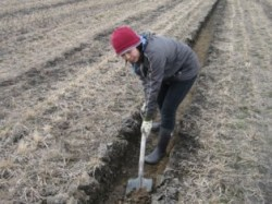農作業-3