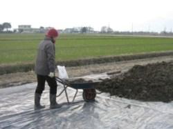 農作業-2