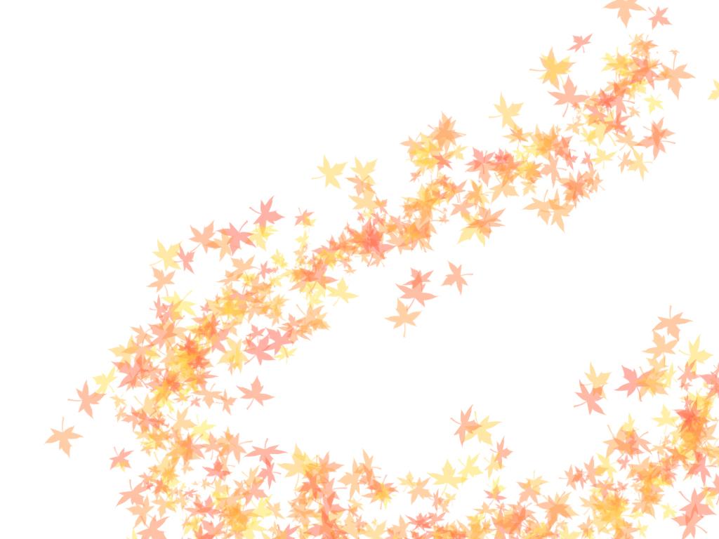 背景色白の紅葉の壁紙