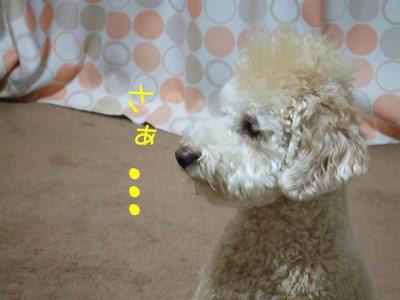 haburasi-016-102502.jpg
