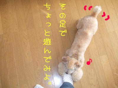 koromogae-049-12.jpg