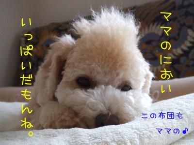 koromogae-072-21.jpg