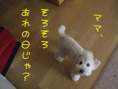 kuisinbou-027-102901.jpg