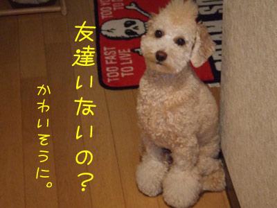 sanpo-005-102304.jpg