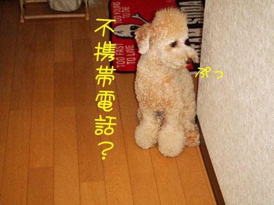 sanpo-007-102303.jpg