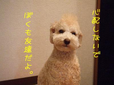 sanpo-034-102306.jpg