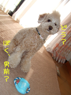 yunko-026-103103.jpg