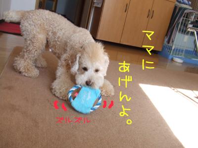 yunko-036-103107.jpg