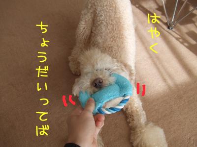 yunko-054-103106.jpg