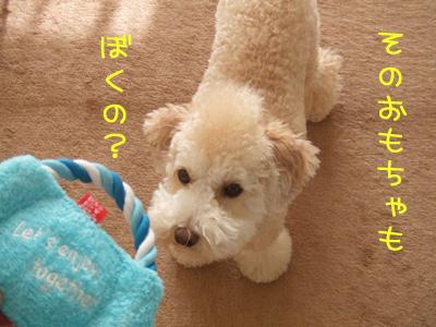 yunko-065-103104.jpg