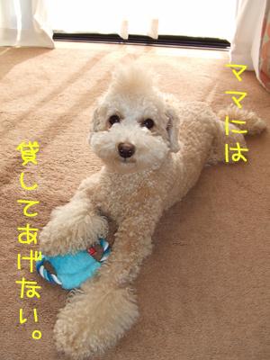 yunko-108-103108.jpg