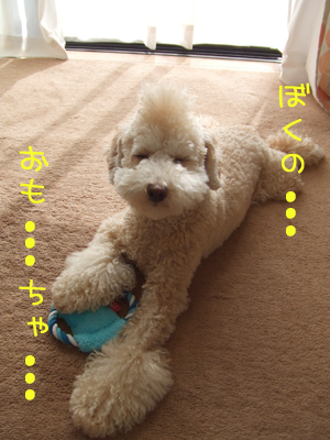 yunko-109-103109.jpg